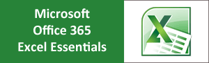 Microsoft Office 365 Excel Essentials Training Course from pd training